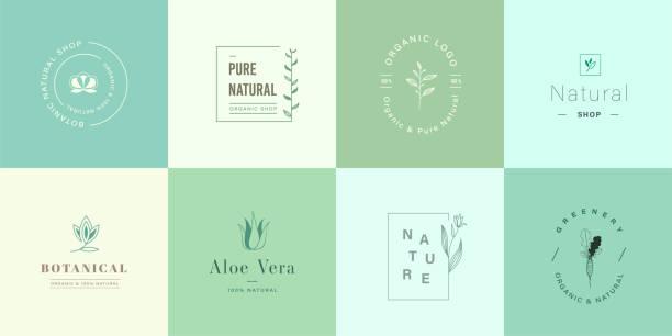 천연 및 유기농 로고 세트입니다. 브랜딩, 기업 정체성, 포장 및 명함을 위한 자연스러운 로고. 플랫 디자인 귀여운 자연 로고. - 유기농 stock illustrations