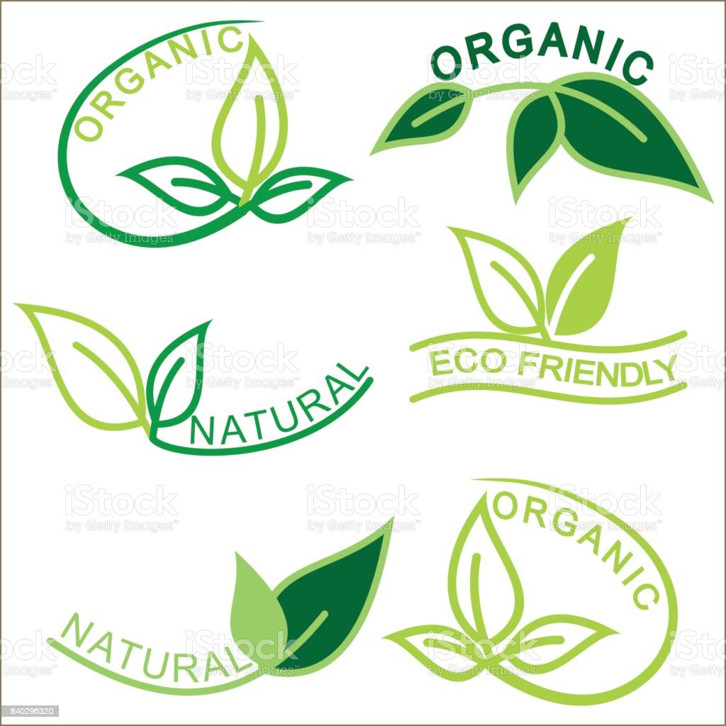 Set Of Natural And Organic Logos With Leaves Stock Vector Art & More ...