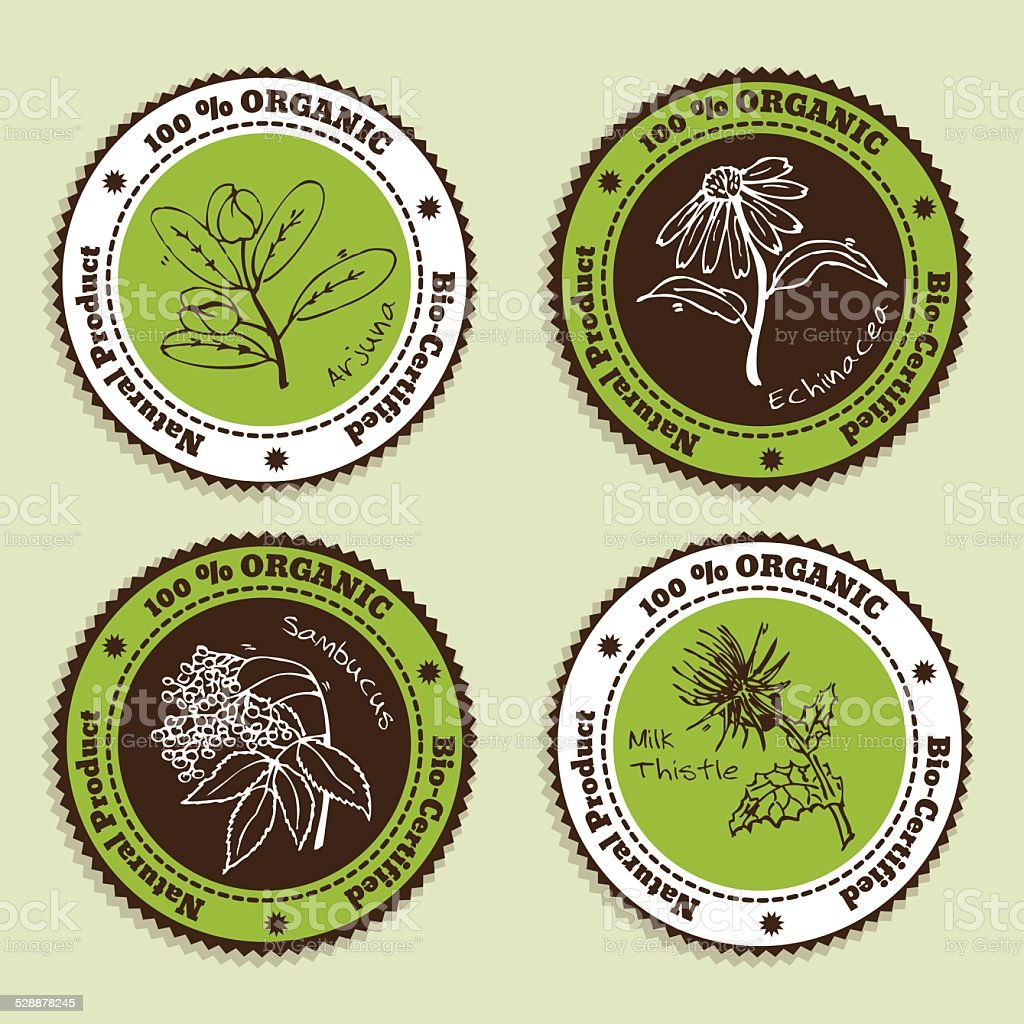 Set of Natural Organic Product badges vector art illustration