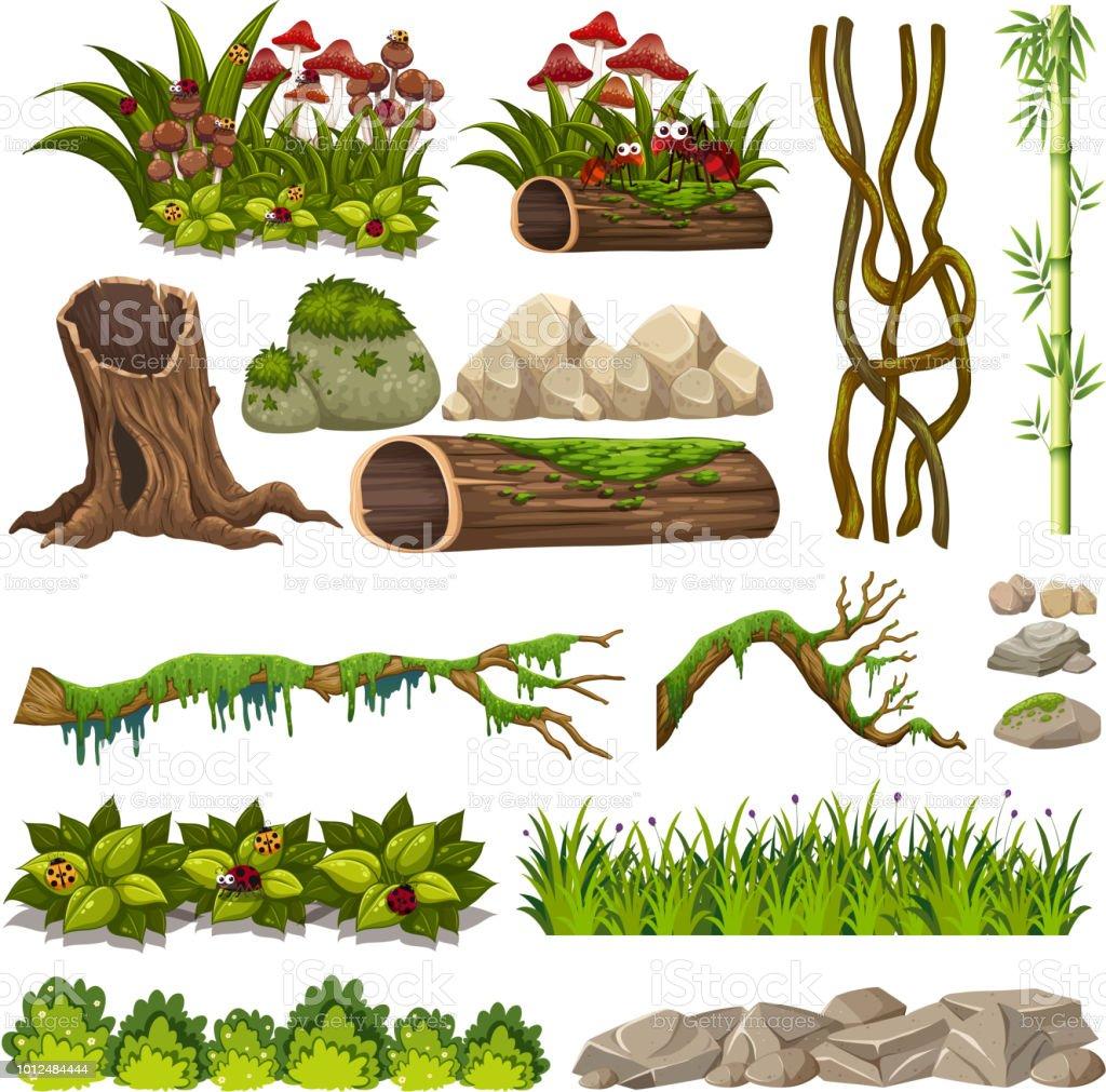 Um conjunto de elementos da natureza - ilustração de arte em vetor