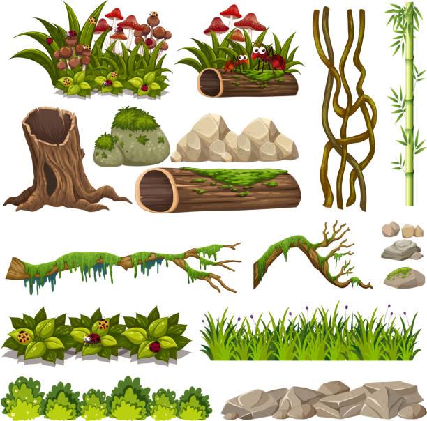 A set of nature elements A set of nature elements illustration moss stock illustrations