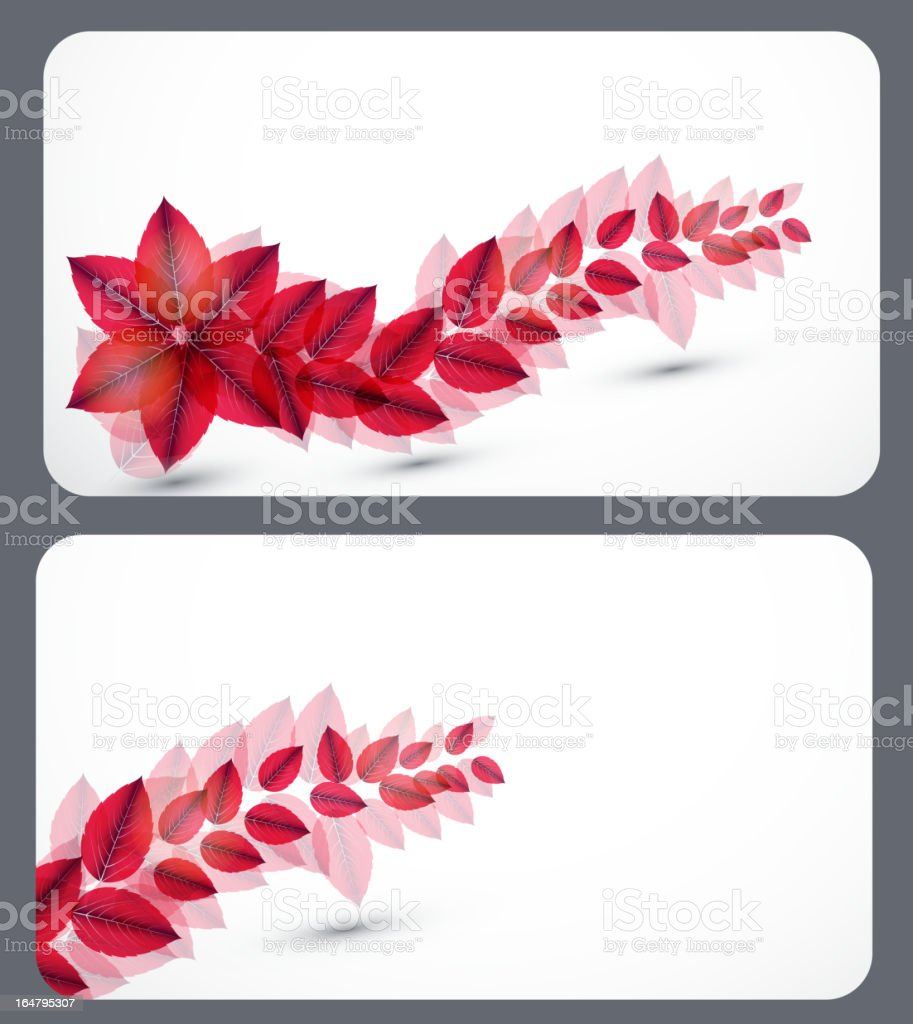 Set of nature gift cards.Vector illustration royalty-free stock vector art