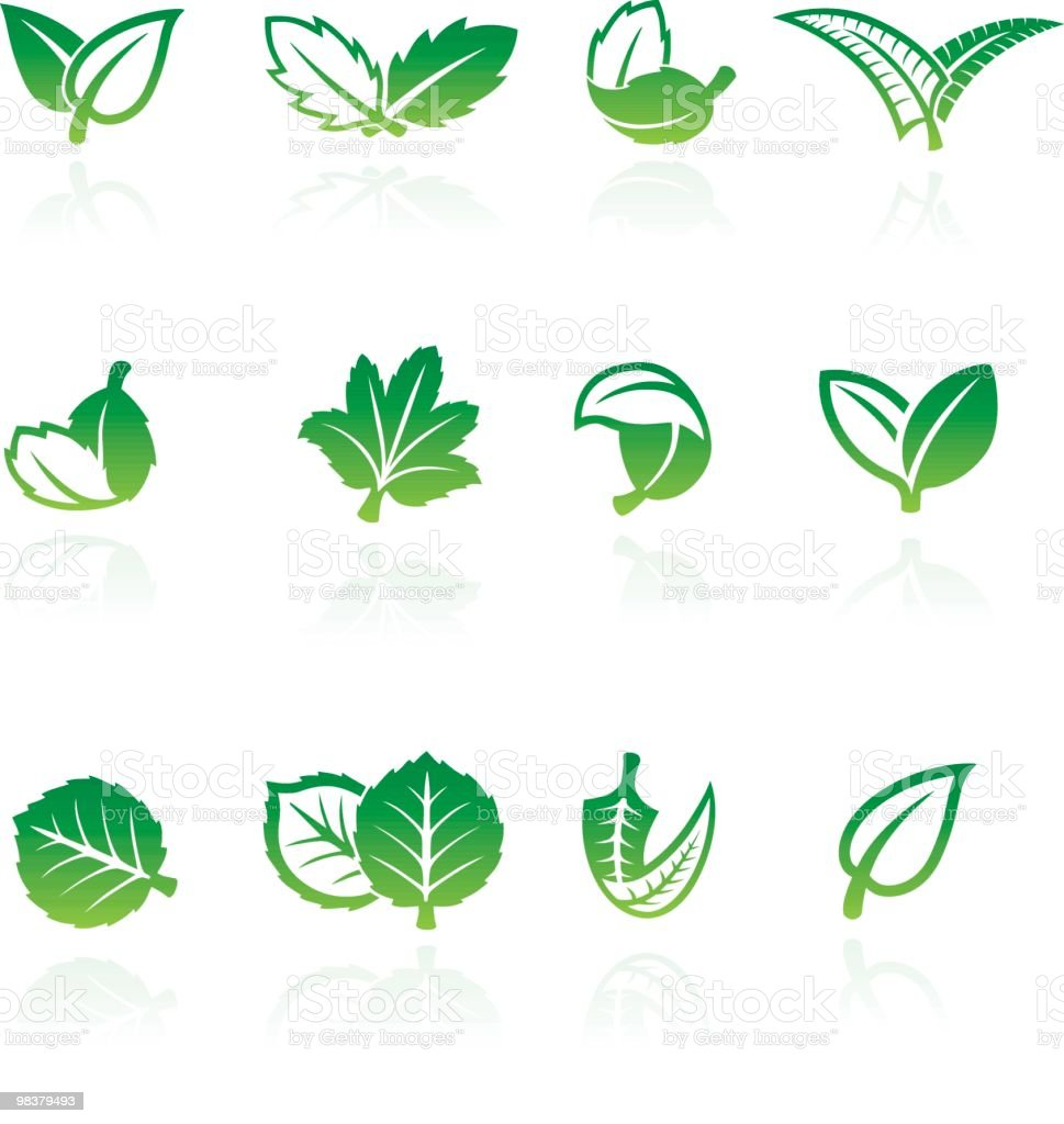 Set of nine green and white vector leaf illustration royalty-free set of nine green and white vector leaf illustration stock vector art & more images of color image