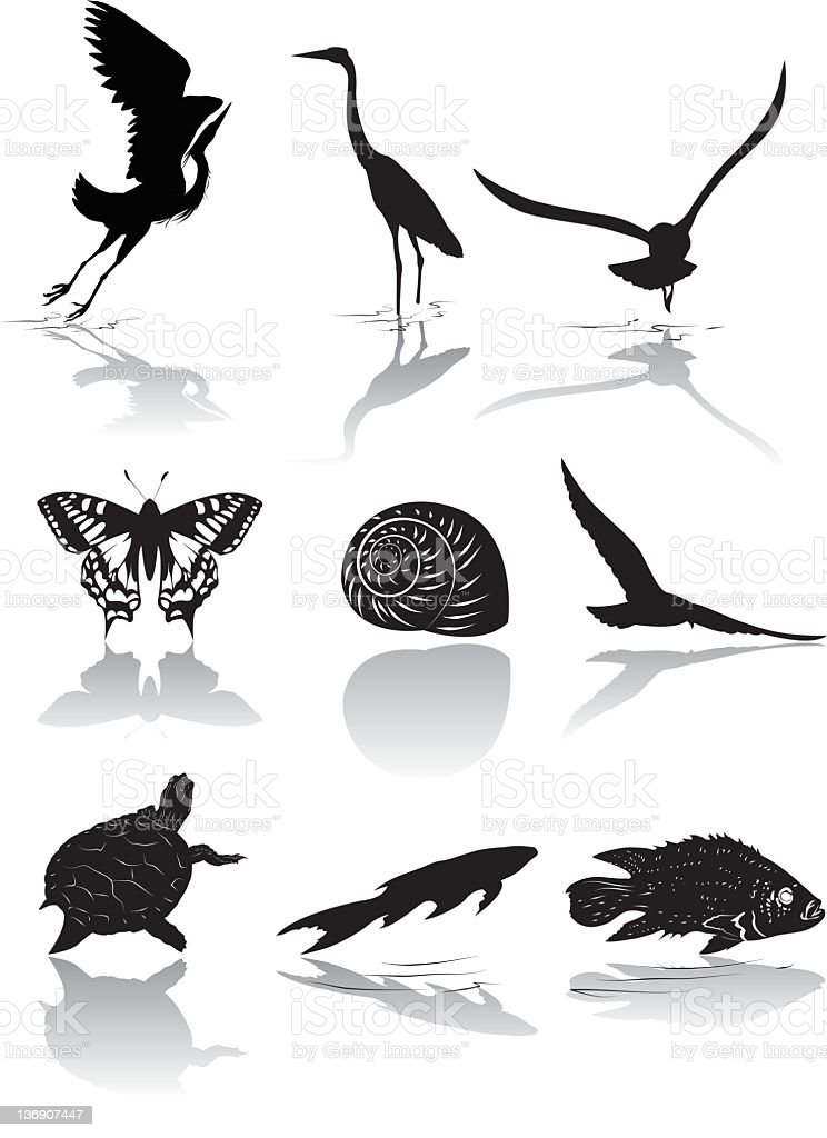 Set of Nine Wetlands Wildlife icons in Black and White vector art illustration
