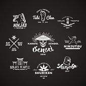 Set of Ninjutsu designs. Sensei skull t-shirt illustration concept