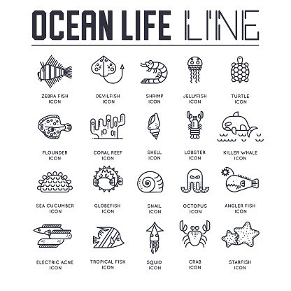 Set of ocean life thin line icons, pictograms.