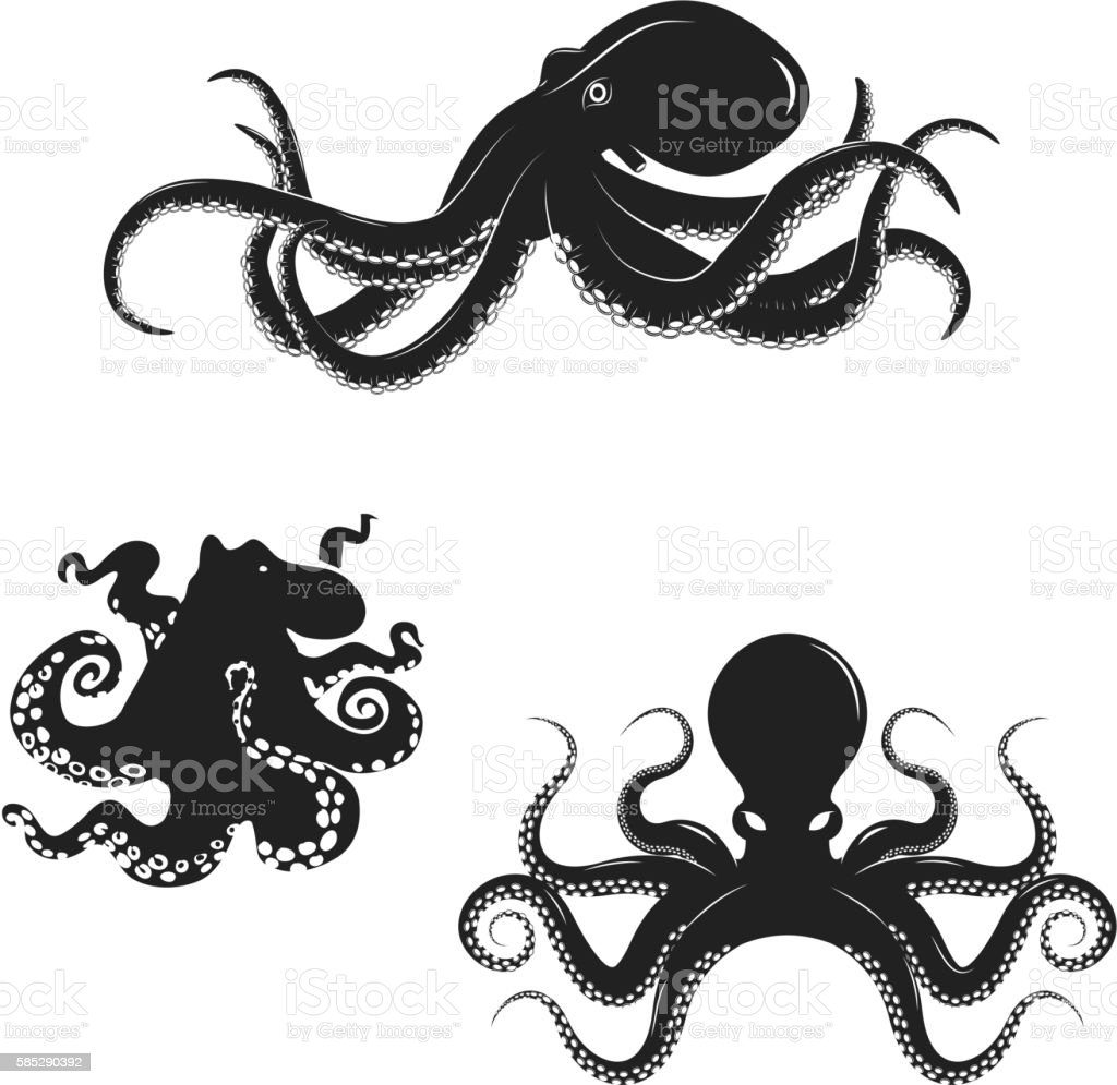 Set of octopus silhouettes isolated on white background. Seafood vector art illustration
