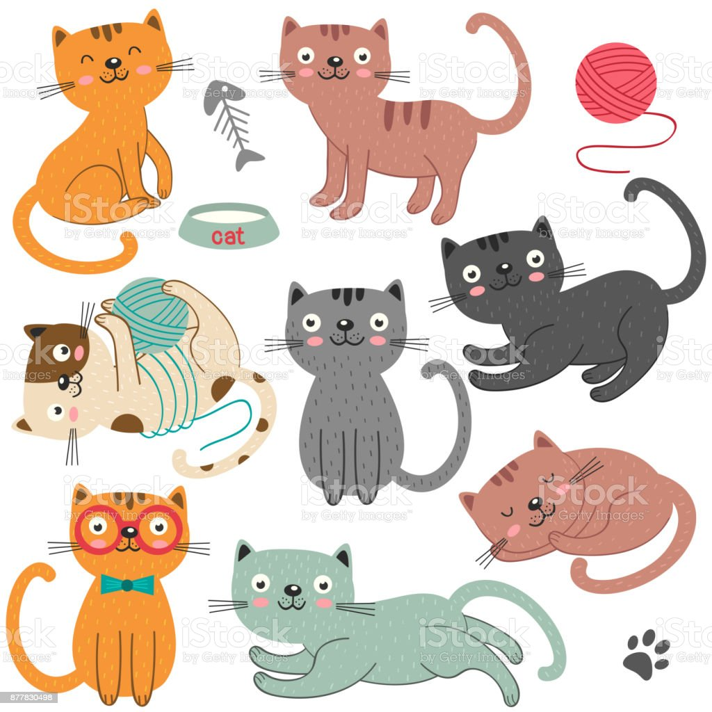 set of of isolated cats character vector art illustration