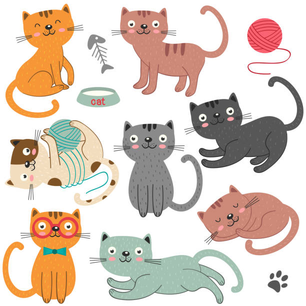 stockillustraties, clipart, cartoons en iconen met set van geïsoleerde katten karakter - sleeping illustration