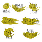 Set of olive oil logos in cartoon style. Vector illustration for design, web and decor for the festival of olives.