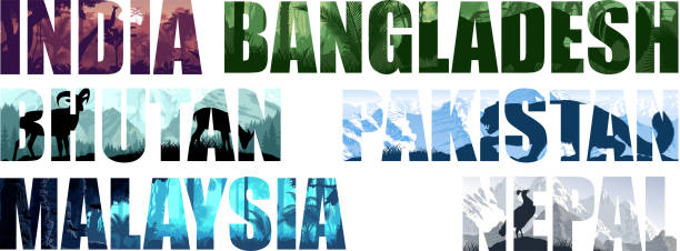 ondostan länder illustrationen: nepal, bangladesch, bhutan, pakistan, malaysia, indien - megabat stock-grafiken, -clipart, -cartoons und -symbole
