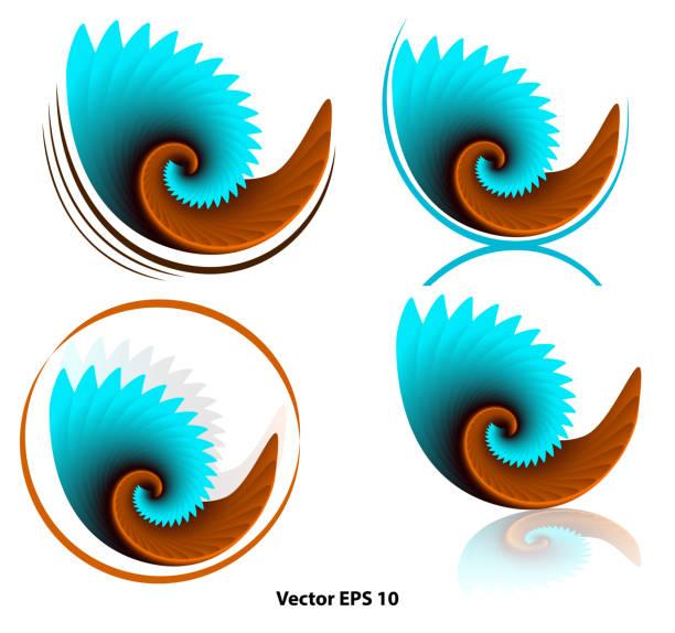 set of orange-blue curls for logo, no background set of orange-blue curls for logo, no background. Vector illustrations nautilus shell stock illustrations
