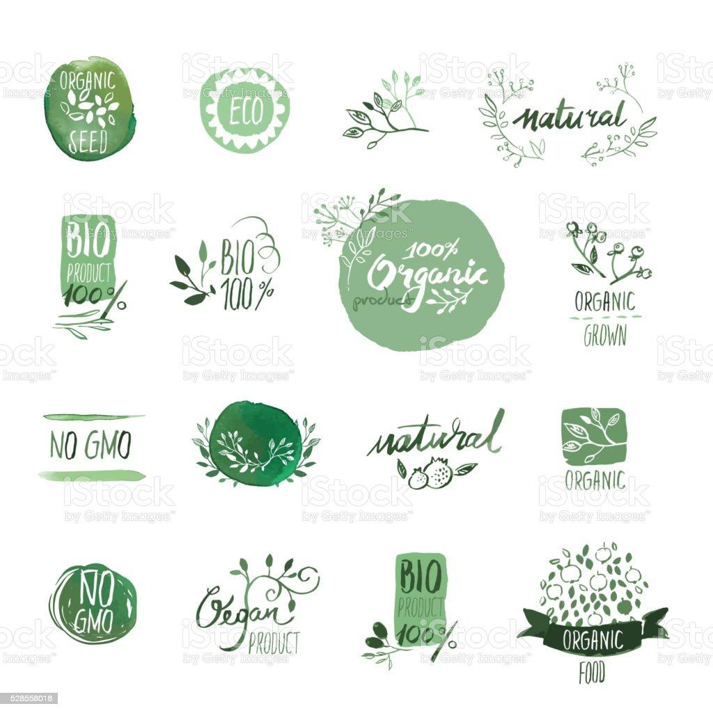 Groupe de nourriture bio aquarelle dessiné à la main, des éléments et des badges - Illustration vectorielle