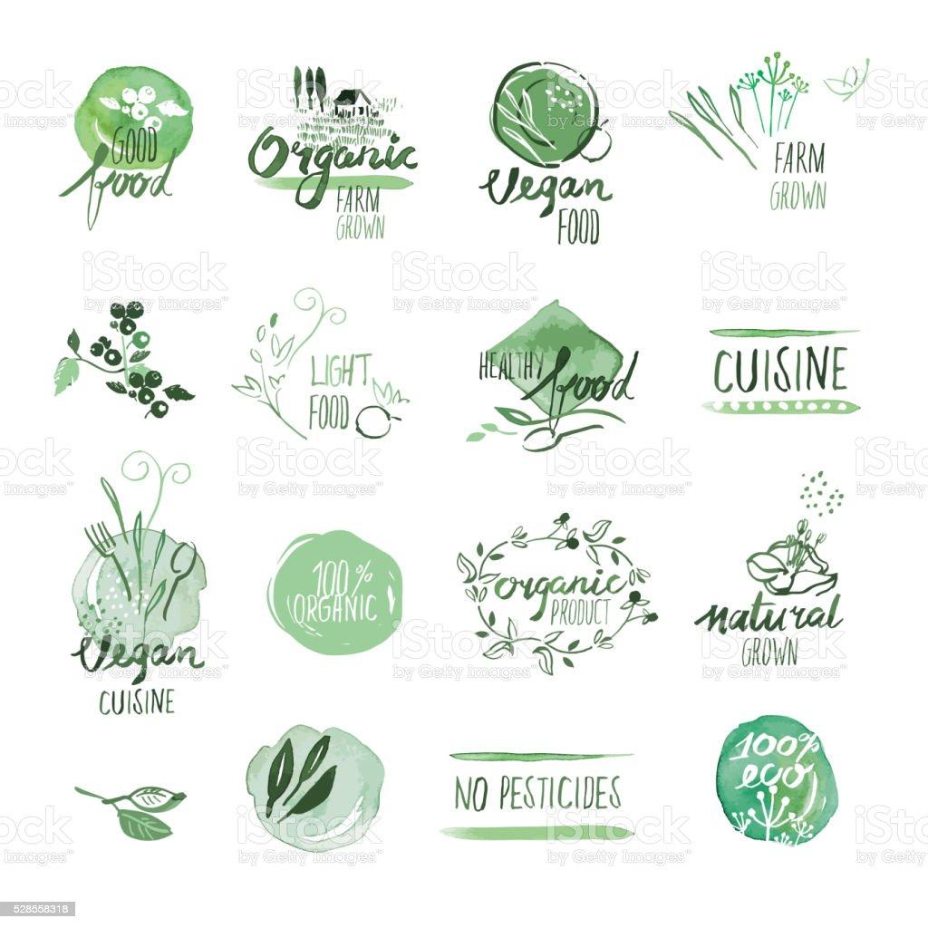 Groupe de nourriture bio aquarelle dessiné à la main étiquettes et badges - Illustration vectorielle