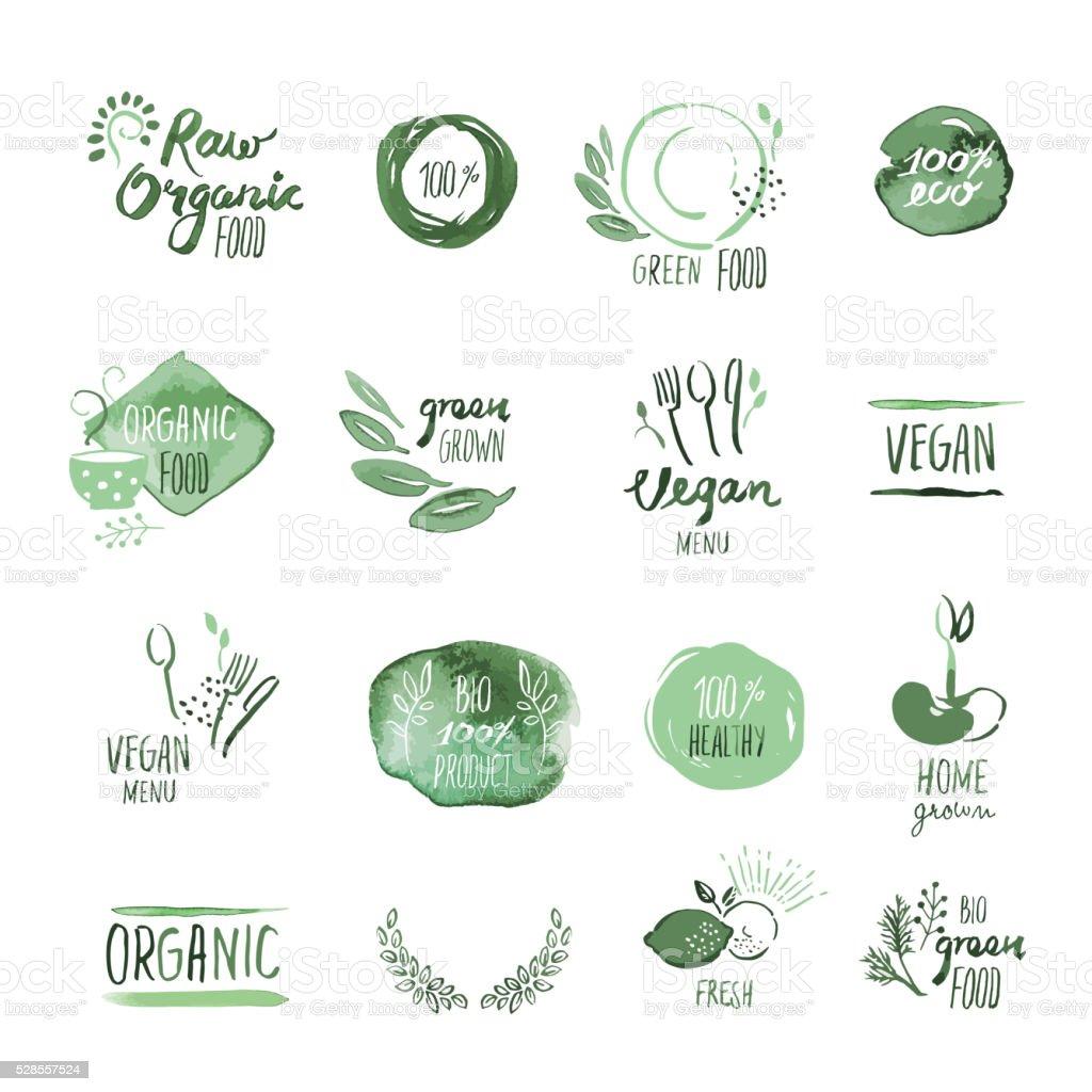 Groupe de nourriture bio autocollants aquarelle dessiné à la main et éléments - Illustration vectorielle
