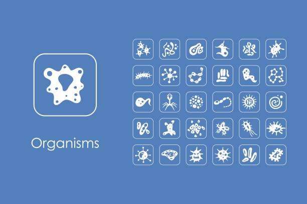 Conjunto de iconos de microorganismos simple  - ilustración de arte vectorial