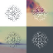 Set of Ornament round mandalas with a blurred background