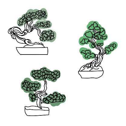 Set of outline bonsai trees with green leaves, vector hand draw illustration for