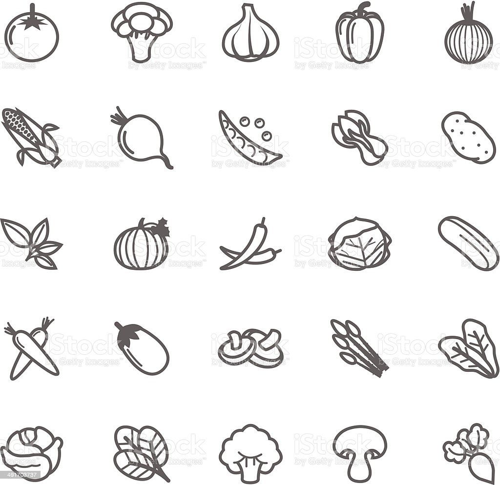 Set of Outline stroke Vegetable icon vector art illustration
