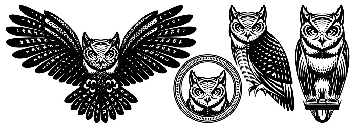A set of owls in different positions. Vector monochrome illustration. Templates for design, tattoo, print, advertising poster