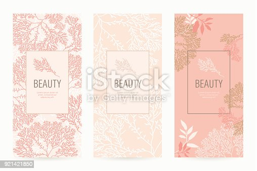 istock A set of packaging templates with floral texture for luxury products. 921421850