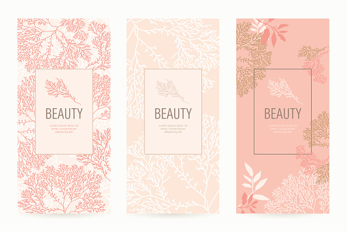 A set of packaging templates with floral texture for luxury products. clipart