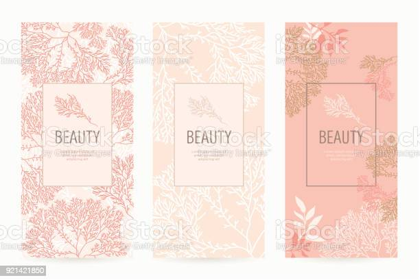 Set of packaging templates with floral texture for luxury products vector id921421850?b=1&k=6&m=921421850&s=612x612&h= 37k9tjp tsoulvuwyvscidr bd aofdkzznok2p9b4=
