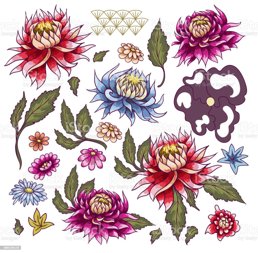 Set of painted flowers asters. Japanese style. vector art illustration