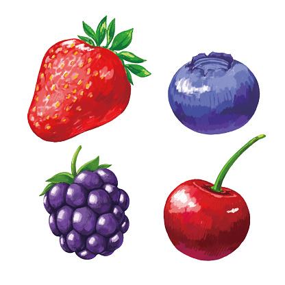 Set Of Painting Berries