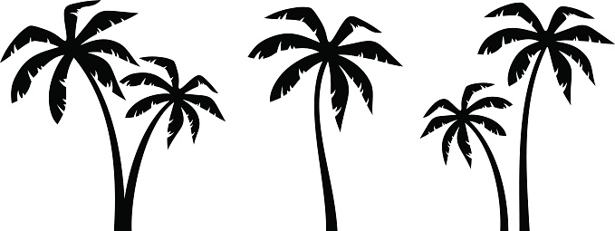 Set of palm trees. Vector black silhouettes.