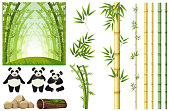 Set of panda and bamboo illustration