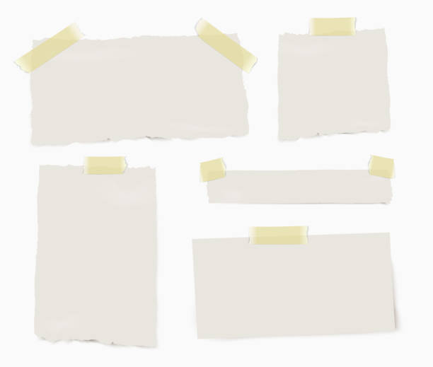 Set of paper different pieces of paper with transparent shadows isolated on white background. vector art illustration