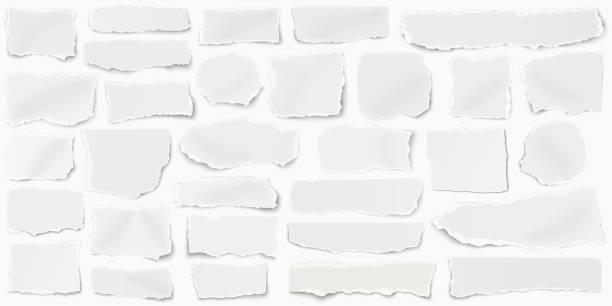 satz von papier verschiedene formen fragmente länsam platziert und isoliert auf weißem hintergrund - zerrissen stock-grafiken, -clipart, -cartoons und -symbole