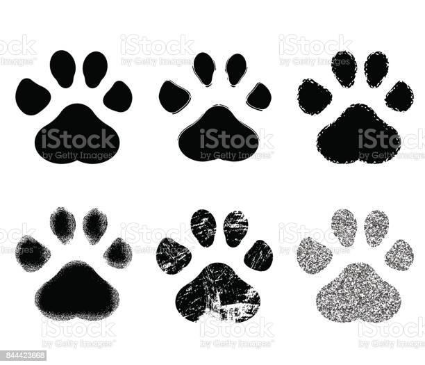 Set of paw print vector illustration vector id844423668?b=1&k=6&m=844423668&s=612x612&h=d0hvevtvpnlttfhv8dz98tdzhum0gc5woliiowt cnq=