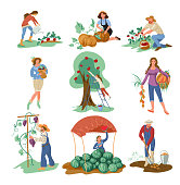 Set of people that collect natural eco food from home garden. Cartoon style. Vector illustration on white background