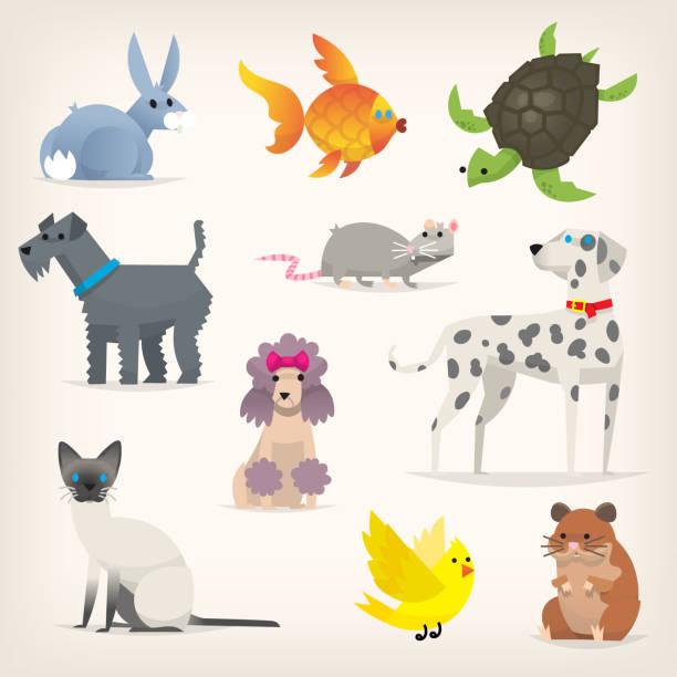 satz von 2 haustiere - hamsterhaus stock-grafiken, -clipart, -cartoons und -symbole
