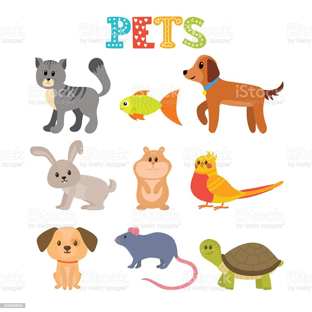 Set Of Pets Cute Home Animals In Cartoon Style Stock ...
