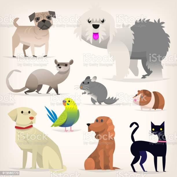 Set of pets vector id919585270?b=1&k=6&m=919585270&s=612x612&h=p5o8psibu0nufzn0q7hvawwpr6dckeiux miu1vgfjm=