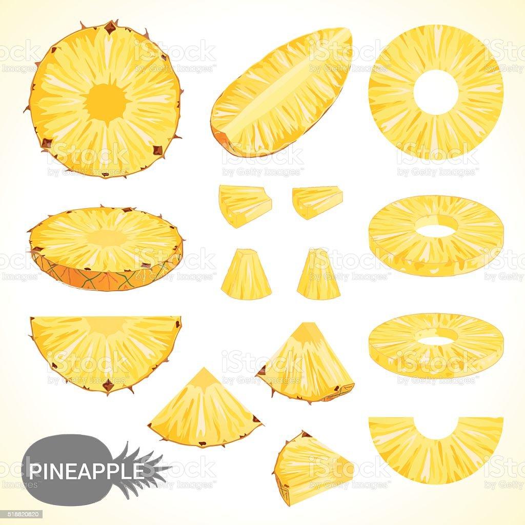 Zestaw ananasa w różnych styl Wektor format – artystyczna grafika wektorowa