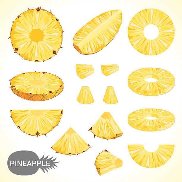 illustrazioni stock, clip art, cartoni animati e icone di tendenza di set di ananas in vari stili formato vettoriale - ananas