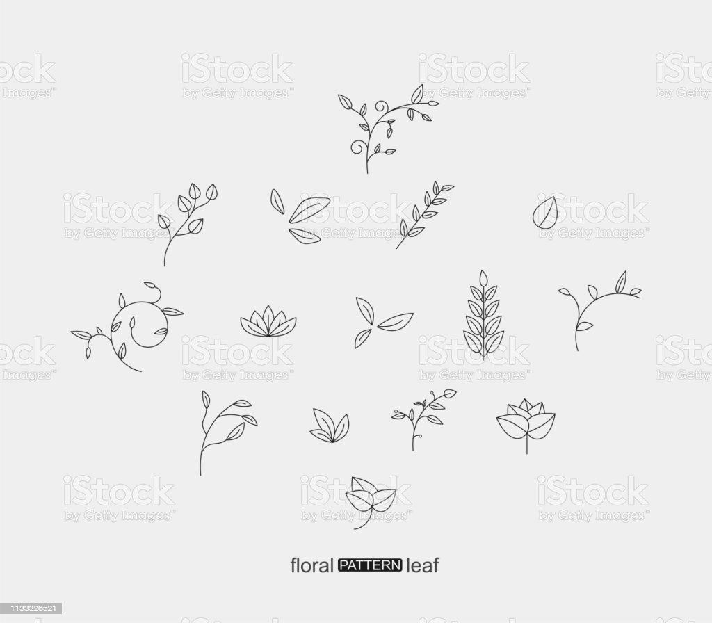 一套植物花卉和樹葉圖案圖示 - 免版稅一組物體圖庫向量圖形