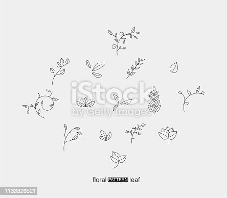 set of plant floral and leaf pattern icon