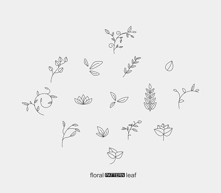 一套植物花卉和樹葉圖案圖示向量圖形及更多一組物體圖片