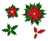 Set of poinsettia plants on a transparent, white background. Paper cut templates for Christmas greetings