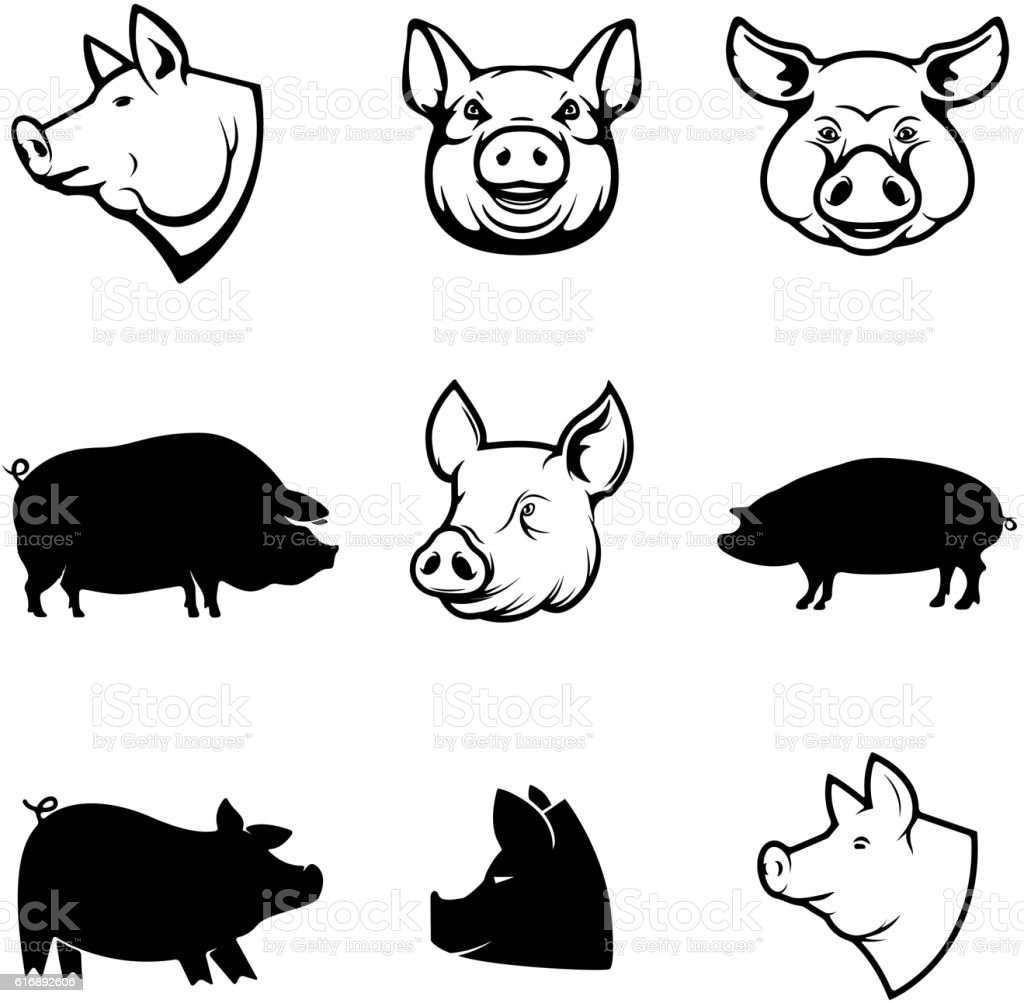 Set of Pork labels. Pig silhouettes and heads. Design elements vector art illustration
