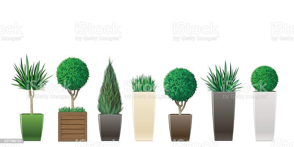 Insieme di piante in vaso - illustrazione arte vettoriale
