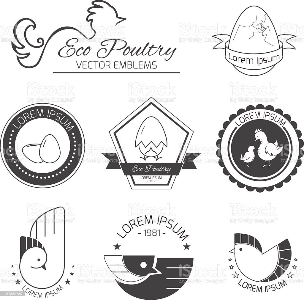 Set of poultry emblems vector art illustration