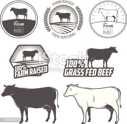 Set of premium beef labels, badges and design elements.