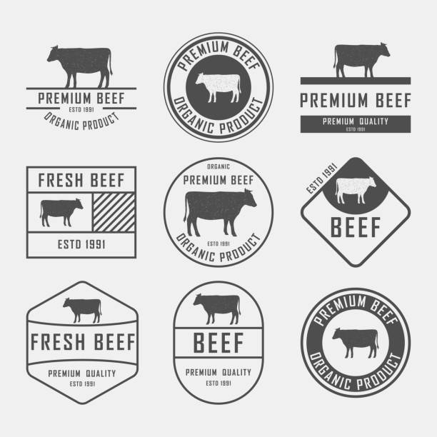 프리미엄 쇠고기 레이블, 배지 및 디자인 요소 집합입니다. 벡터 일러스트입니다. - 소고기 stock illustrations