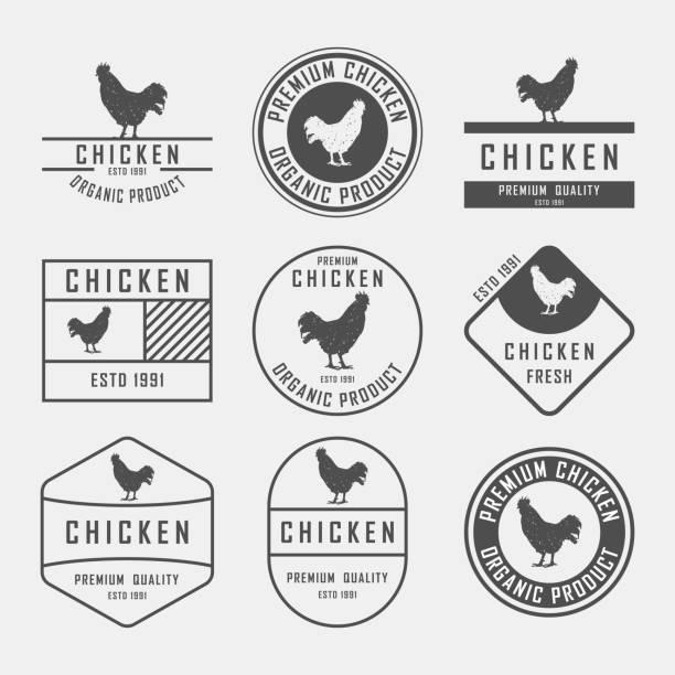 bildbanksillustrationer, clip art samt tecknat material och ikoner med uppsättning av premium kyckling etiketter, märken och designelement. vektorillustration. kyckling-logotypen. - chicken